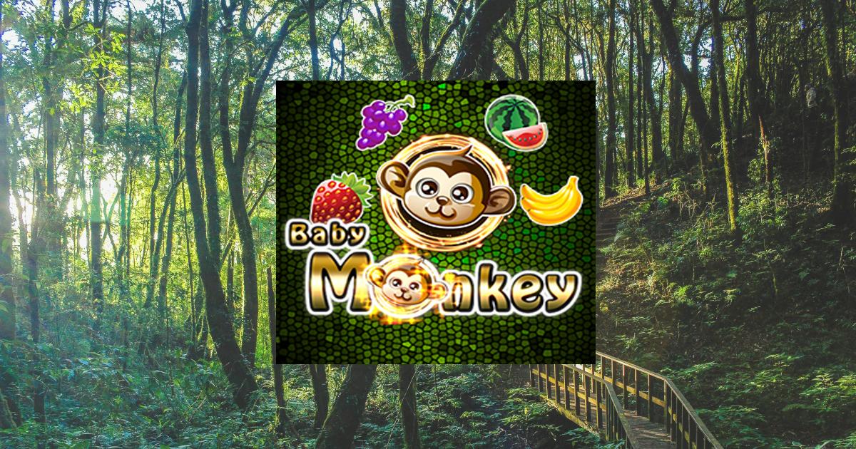 แนะนำสัญลักษณ์พิเศษ Baby Monkey เกมสล็อตเง่นง่าย แตกโหดเกิน ที่มือใหม่มือเก่าควรรู้!!!